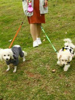 Double Retractable Dog Leash