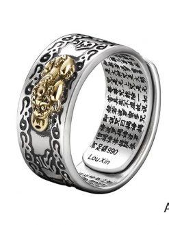 Feng Shui Wealth Ring