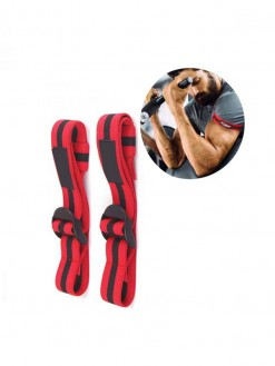 Occlusion Training Bands