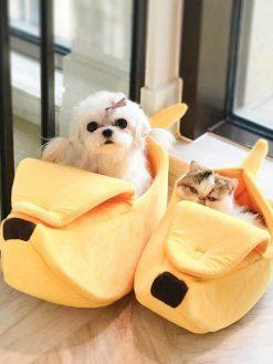 Banana Peel Bed