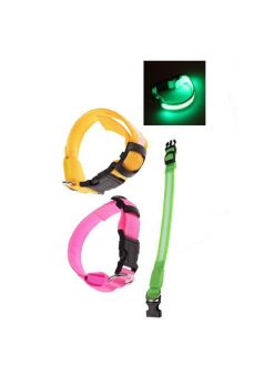 Safety Collar LED Light