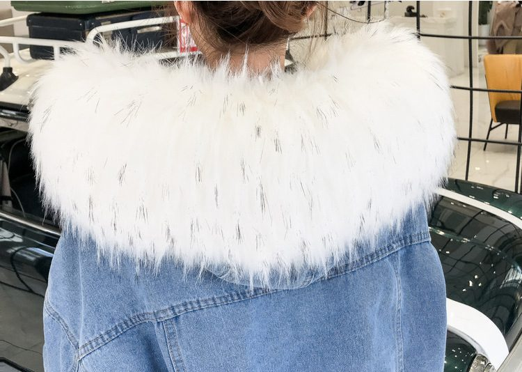 Winter Fur Jacket