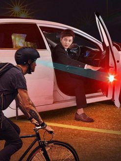 Car Door Signal Lights