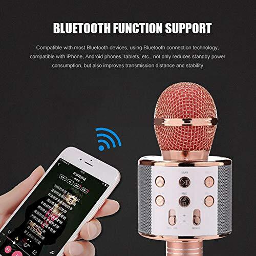 4 in 1 Wireless Karaoke Microphone