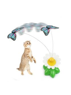 Flying Bird for Cats