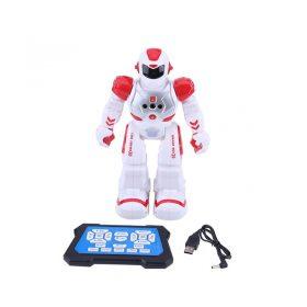 Smart Dance Robot