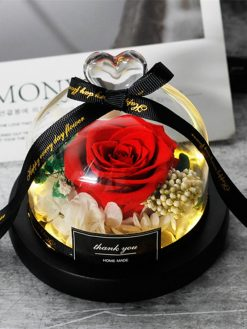 Dome Real Rose in flask glass dome